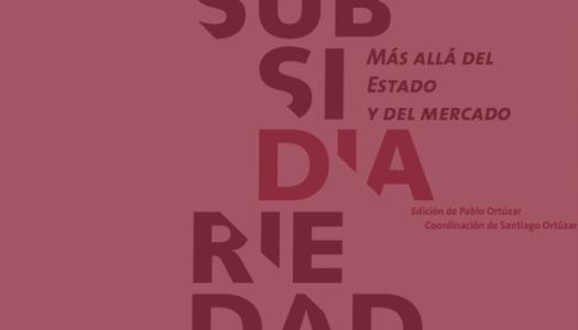 Subsidiaridad, Más allá del estado y del mercado
