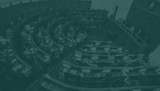 Democracia y límites: los dos pilares de una Constitución legítima